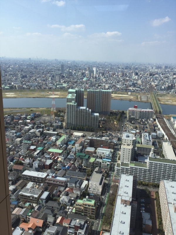 You can see 360' view of suburban Tokyo if the air is clear.