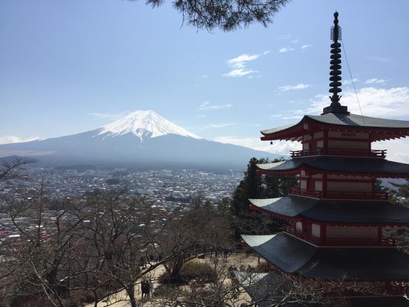 【Option】 Arakurayam Sengen Shrine's hill top observatory with 5 story pagoda. We walk up 398 steps.