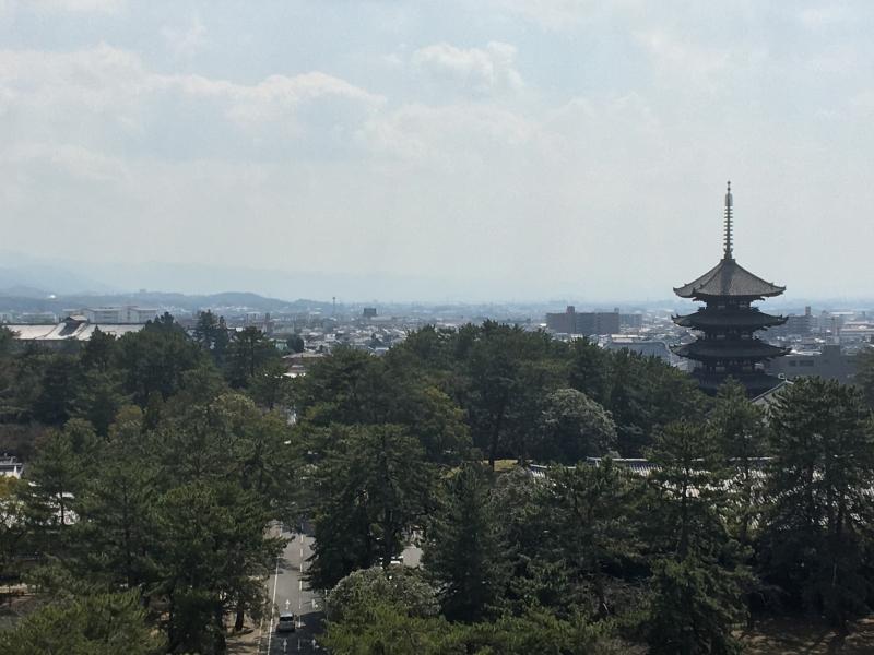 Visite Guidée Privée d'une Journée des Temples de Nara