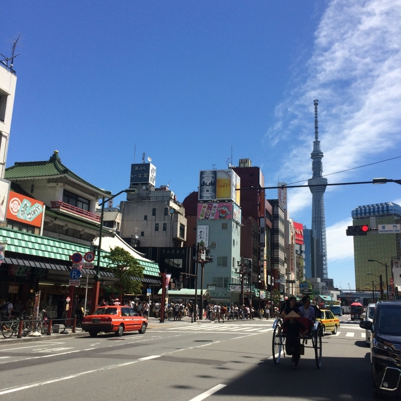 "At Asakusa in front of Sensoji Temple. With the popular ""Jin Riki Sha""."