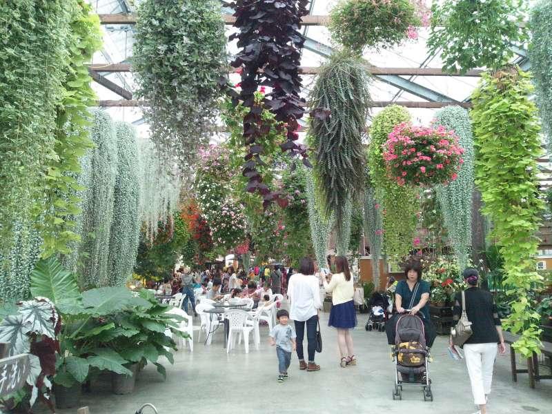 Kobe Animal Kingdom satisfies plant lovers too.