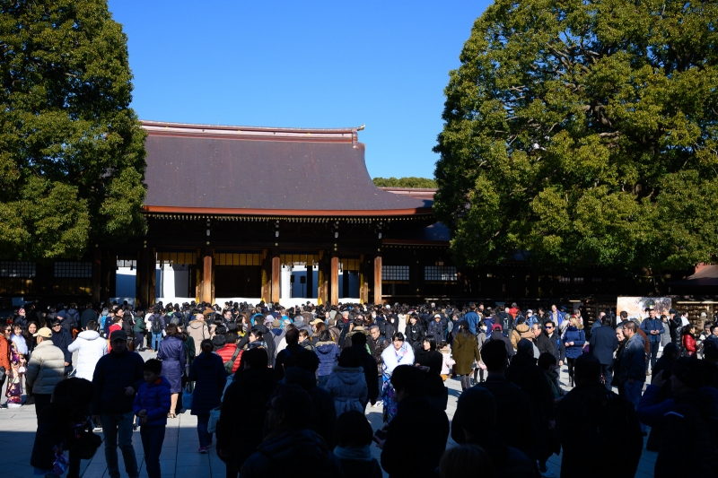 (option) Meiji-jingu Shrine is dedicated to Emperor Meiji and Empress, surrounded by 100 years forest. Sacred atmosphere.