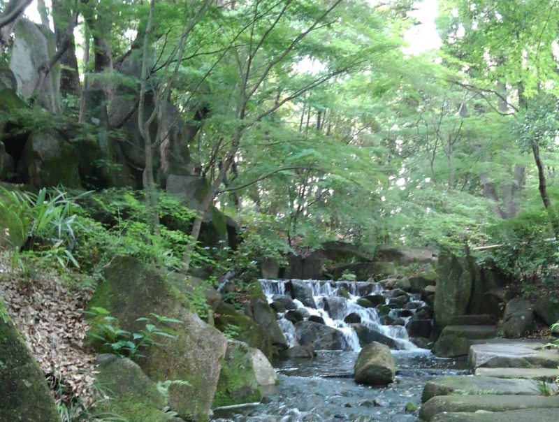 Japanese garden, you can feel relaxed in this beautiful garden