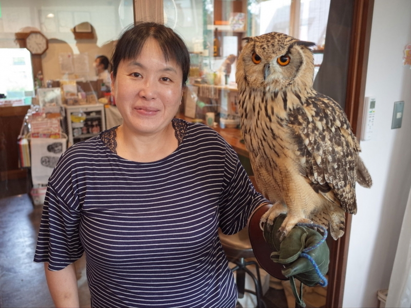 (option) If you are an animal lover, try these amazing animal cafes in this area, such as owl village, cat cafe, Mameshiba dog cafe and so on.