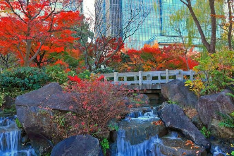The Japanese Daimyo garden at the compound of Roppongi Mid town.