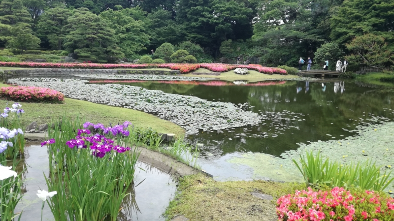 Imperial palace eastern garden in June