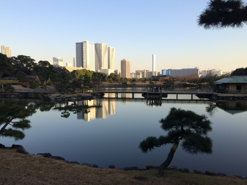 A seawater pond of Hamarikyu Garden with modern skyscrapers at the back