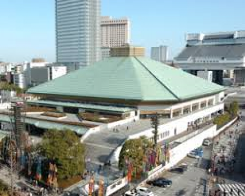 In 1909, the first permanent sumo hall was built in the Ryogoku area. Today's sumo stadium, Kokugikan, is the fourth built in Tokyo and has been in use since 1985. It seats over 10,000 visitors and hosts three of the six annual sumo tournaments.