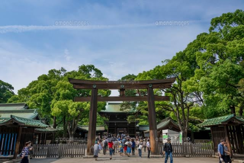 """The """"Meiji Jingu"""" Shrine's the beautiful shrine and the forest of 100,000 trees donated by citizens."""