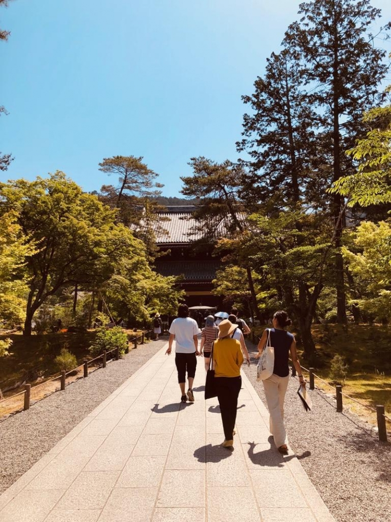 Morning cycling  tour in Kyoto