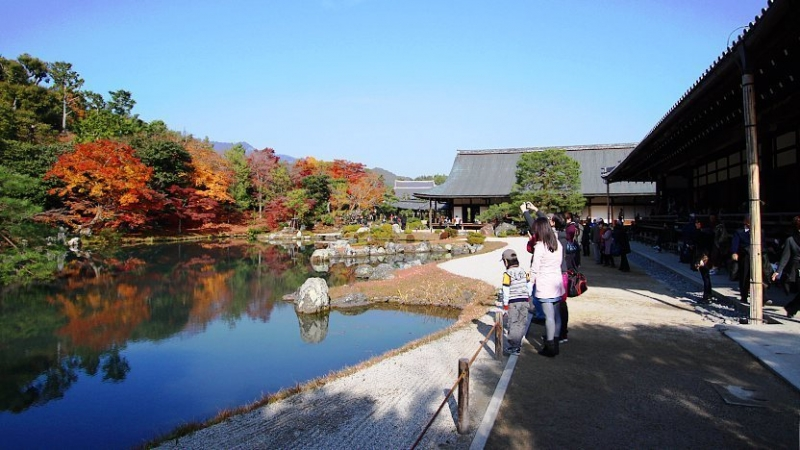 Tenryuji Temple...Traditional Japanese garden with a central pond surrounded by rocks and pine trees