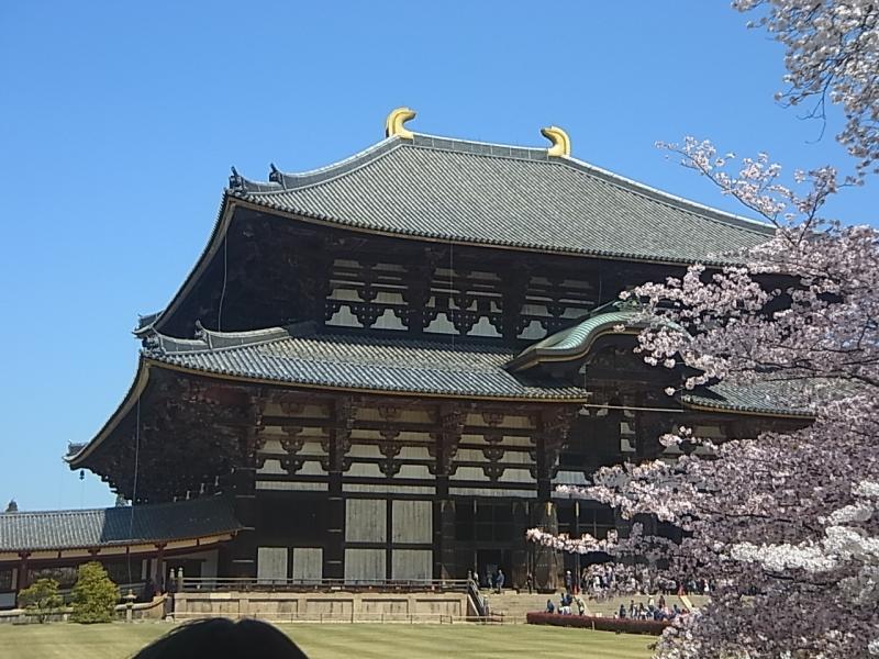 Great Buddha Hall in Todaiji Temple