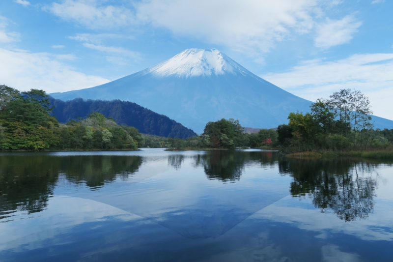 Mt.Fuji, Oshino Hakkai & Shopping Private Tour with Driver
