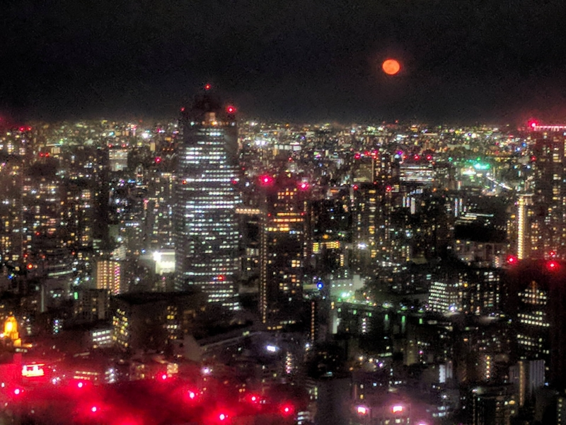 A night view of Tokyo from a viewing deck in Shinbashi