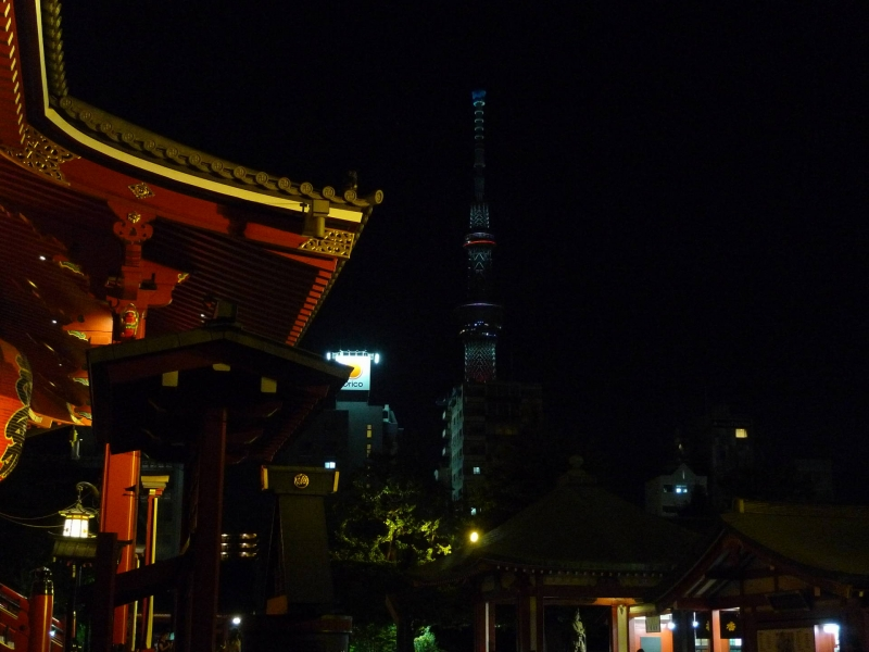 A combination of tradition and evolution, is the charm of Tokyo.
