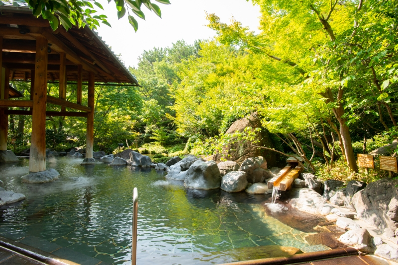 Natural Hot Spring with nature view