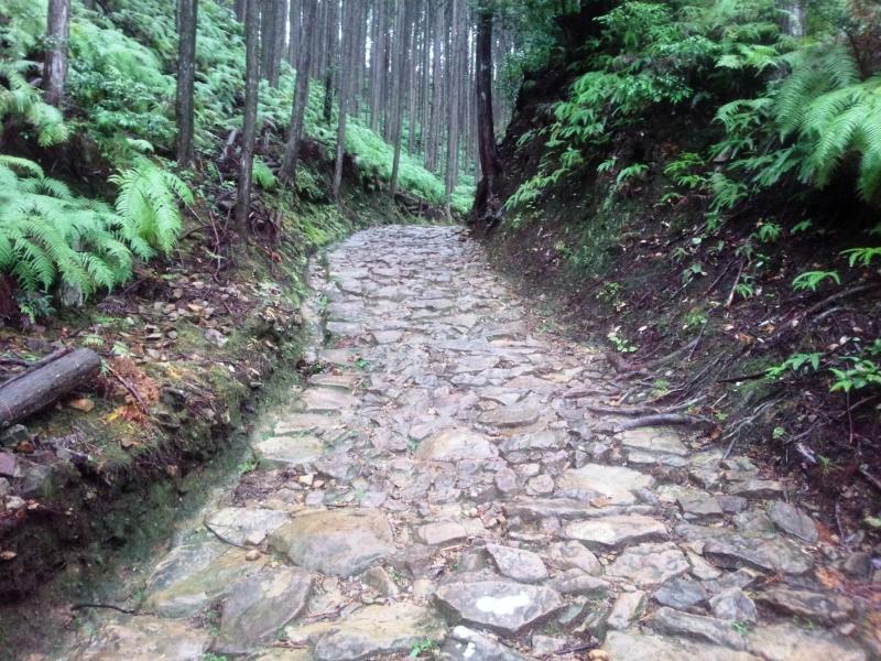 Kumano Kodo Hongu Loop