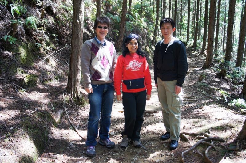 Kumano Kodo Pilgrimage Route, the Final approach to Kumano Hongu Grand Shrine. Pilgrimage Routes stretch through woods.