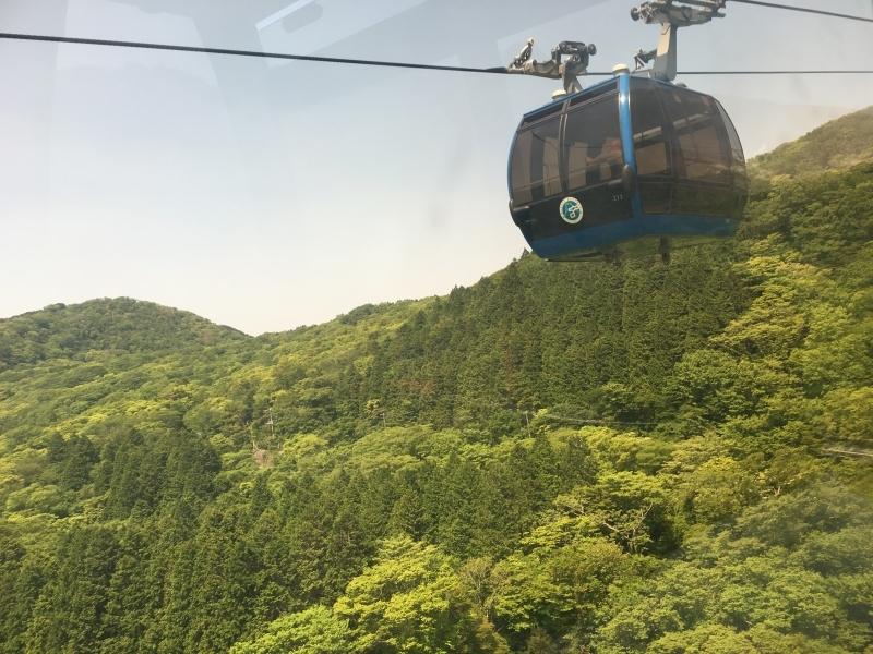 FANTASTIC MT.FUJI & HAKONE 1-Day Bus Tour 2021