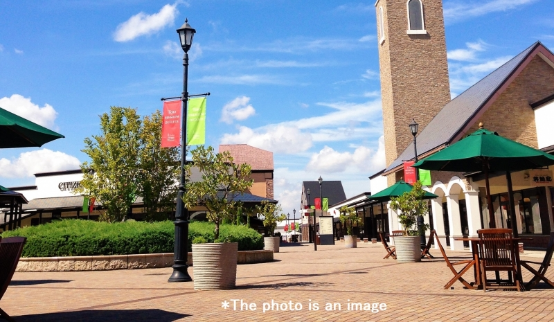 Zoo, Shopping & Christmas Illumination Private Tour