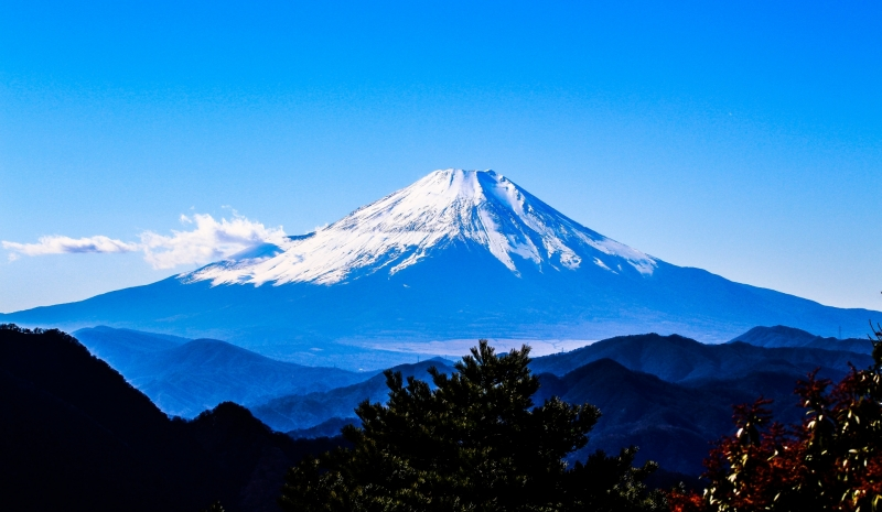 Exciting Bungy Jump & Mt. Fuji sightseeing with driver
