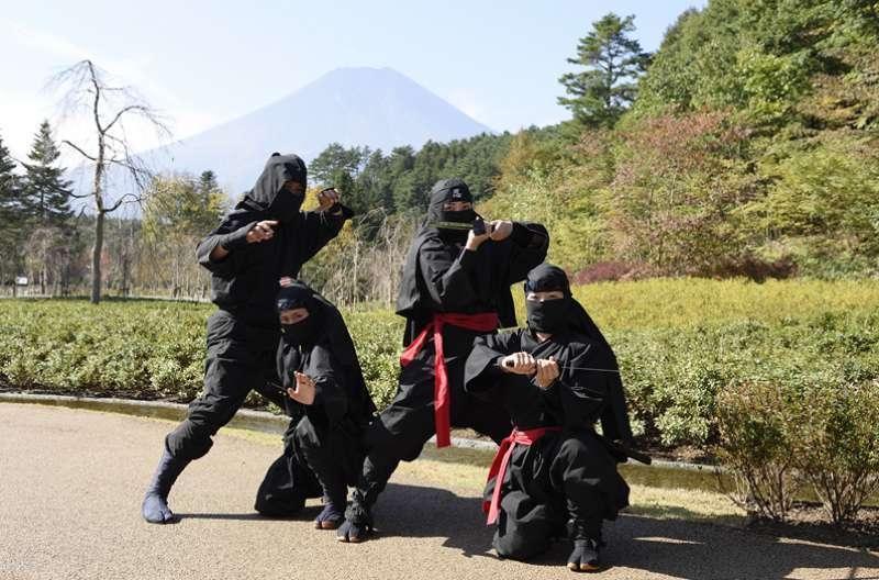 SPECTACULAR MT.FUJI Mt.Fuji 1-Day Bus Tour, 2021