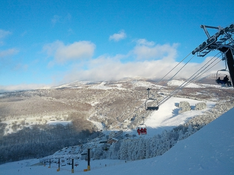 Ski/SnowBoard Group Tour (Semi Private) with a driver