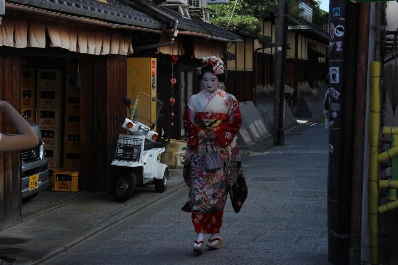 Southern Higashiyama Full Day Private Walking tour