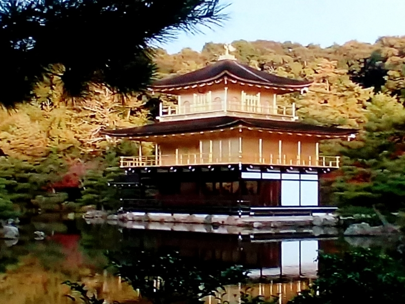 Behind the pond, the founder, Ashikaga Yoshimitsu planned to make anothe pond. The guide will show you the ruin of the pond.