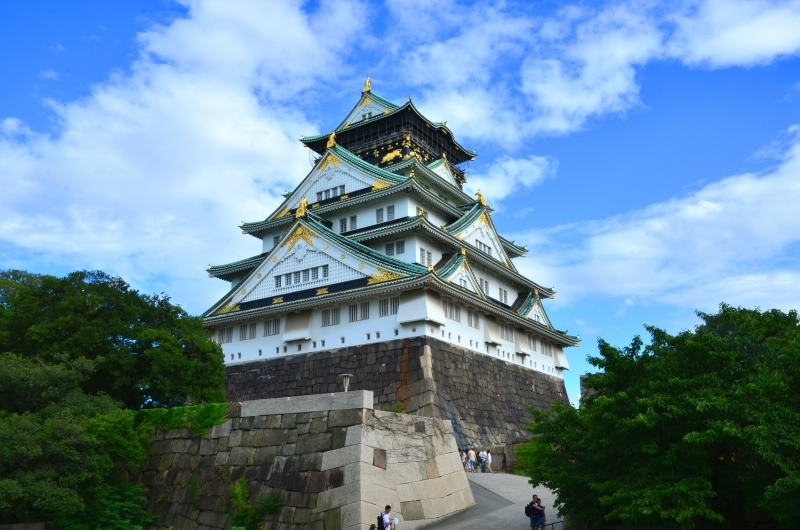 Osaka one day Private Tour with Driver