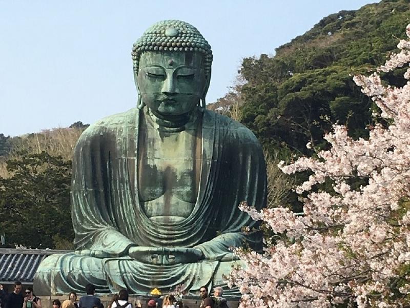 Great Buddha in Kotokuin Temple