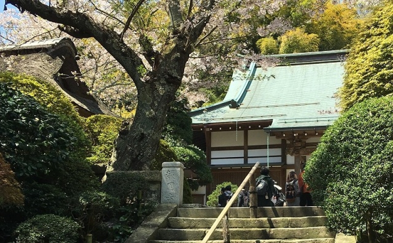 Hokokuji Temple (Bamboo Temple)