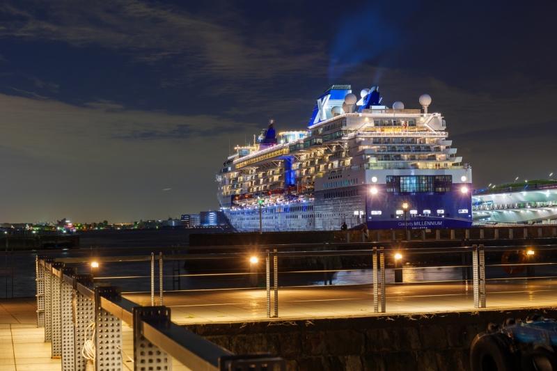 Private Yokohama Port Transfer to/from Tokyo