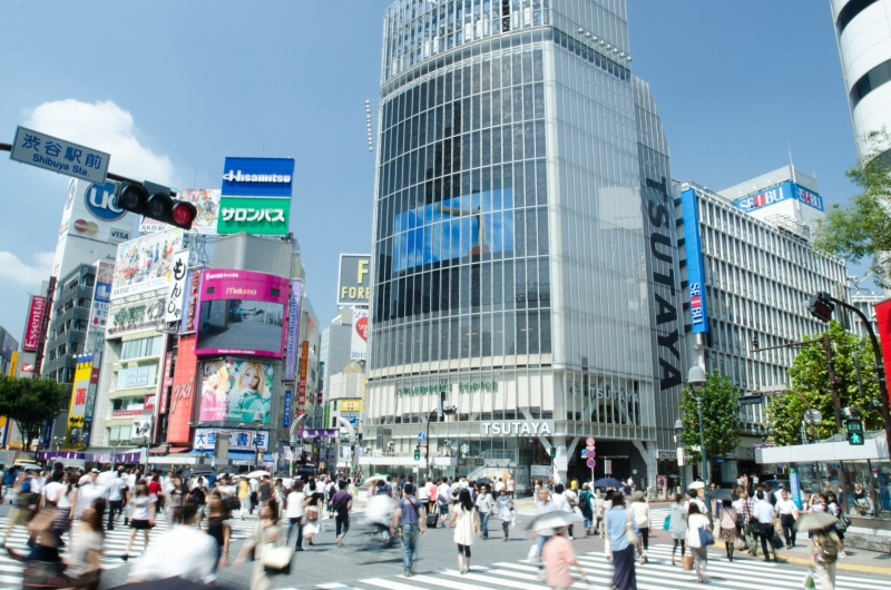 Tokyo: 4 hour Customizable Private Tour with Driver