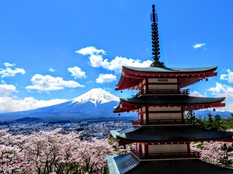 Mt.Fuji & Hakone Private Tour with a Driver