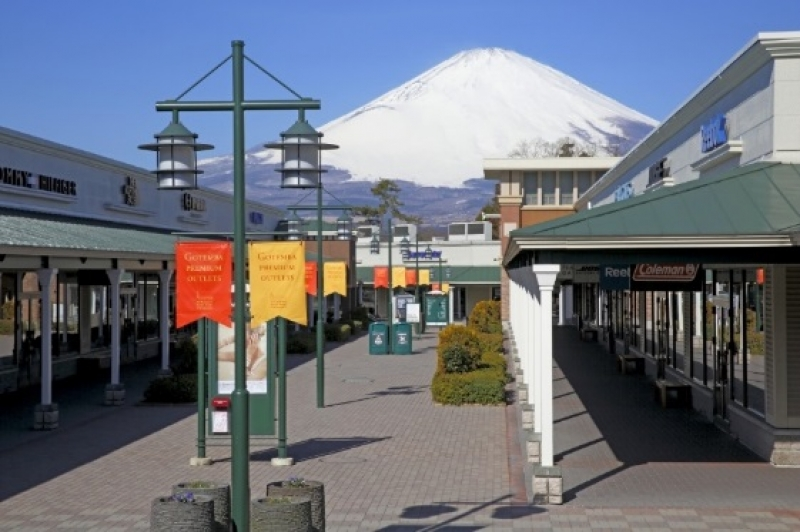 Experience Japanese Snow one day Private Tour
