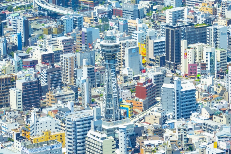 Osaka: Full-Day Customizable Private Tour with Driver