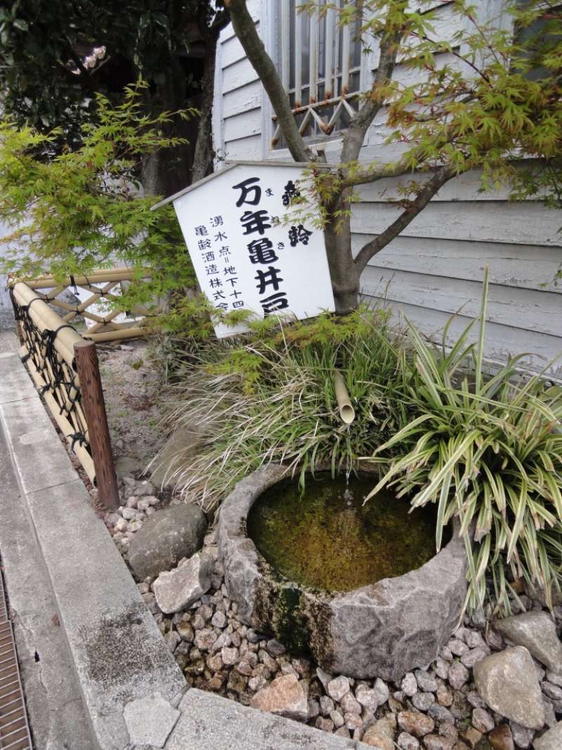 Good quality water is a must for sake-making. There are many wells next to Sake breweries. You may touch and taste it.