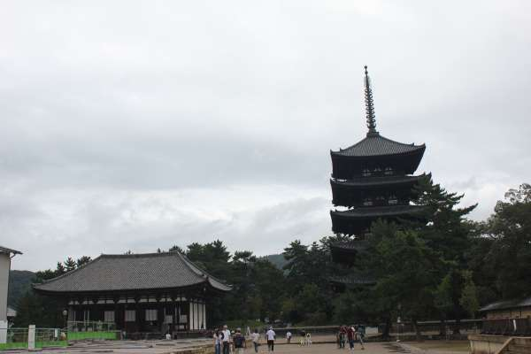 The five-storied Pagoda in the Kofukuji-Temple complex.