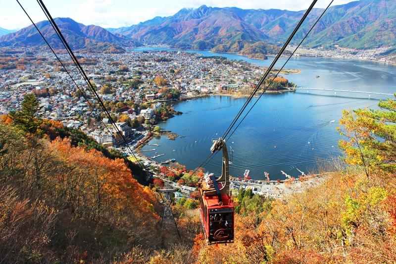 One-Day Mt.Fuji & Kawaguchiko Private Alphard Car Tour