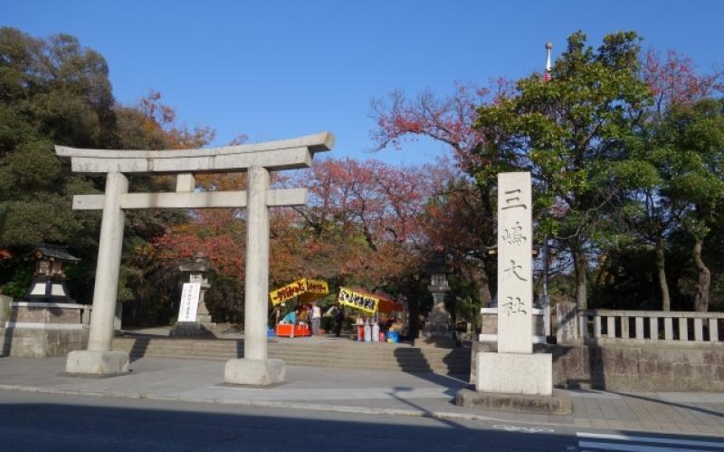Gate of the Mishima Grand Shrine