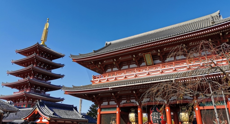 Tokyo: Tokyo (Edo) History 1 day Group Tour with Driver