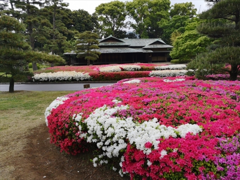 A tea house in the Imperial Palace East Garden in early May.