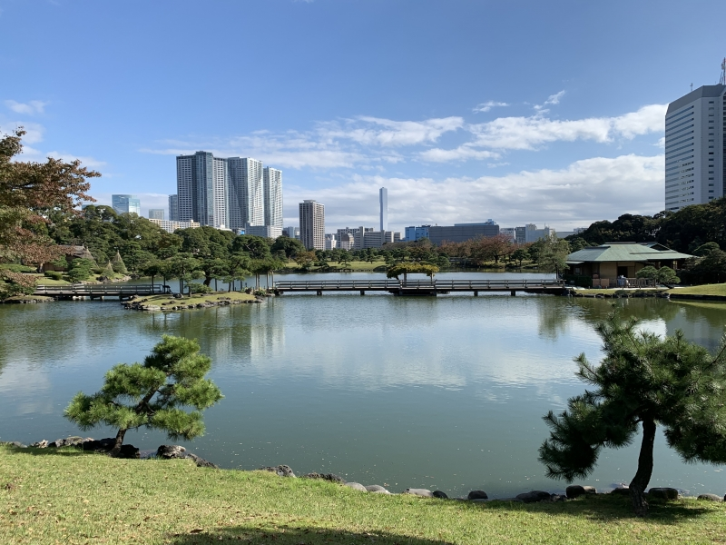 Hamarikyu Garden,  a traditional Japanese style garden built in the 18th century.  It's surrounded by modern high-rises in the bay-side area.