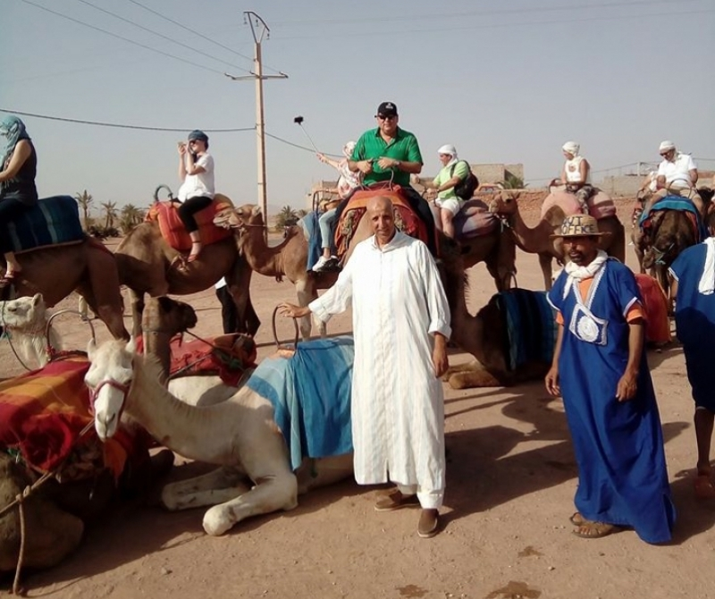 Camel ride in the Palmeraie