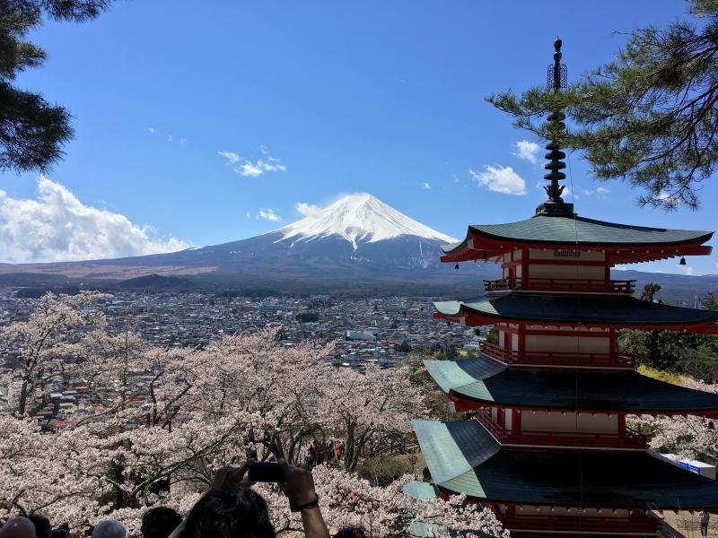 Mt. Fuji from Arakurayama Sengen Park.