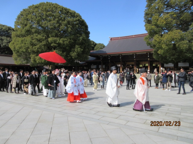 Wedding Ceremony at Meiji Jingu Shrine in Tokyo
