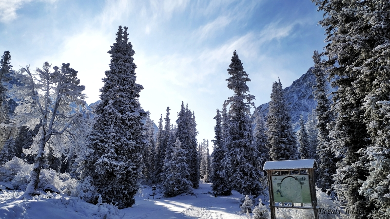 winter in National park