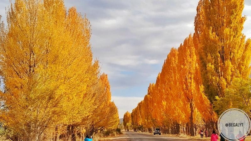 South SHore of Yssyk Kul lake Autumn