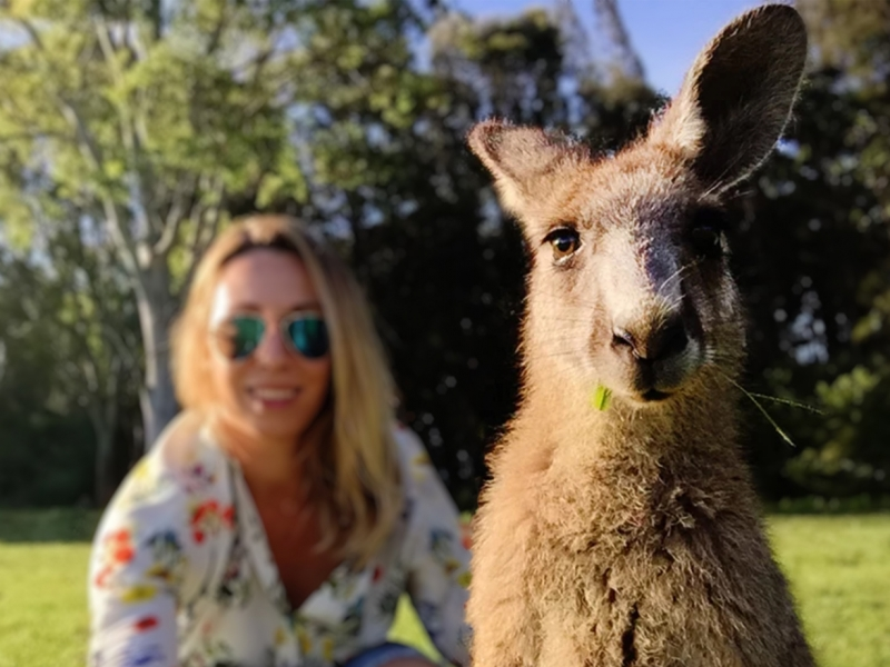 Ever patted a kangaroo or hugged an emu? You can on this tour!